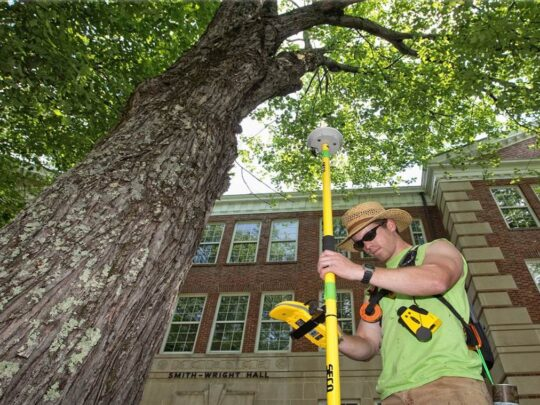 Arborist Consultations-Southwest Ranches FL Tree Trimming and Stump Grinding Services-We Offer Tree Trimming Services, Tree Removal, Tree Pruning, Tree Cutting, Residential and Commercial Tree Trimming Services, Storm Damage, Emergency Tree Removal, Land Clearing, Tree Companies, Tree Care Service, Stump Grinding, and we're the Best Tree Trimming Company Near You Guaranteed!