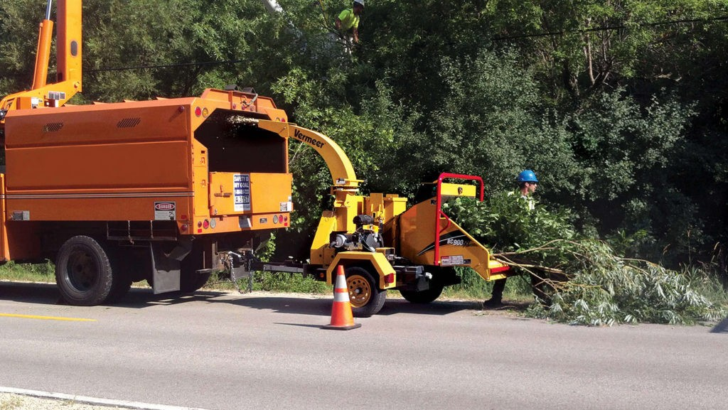 Commercial Tree Services-Southwest Ranches FL Tree Trimming and Stump Grinding Services-We Offer Tree Trimming Services, Tree Removal, Tree Pruning, Tree Cutting, Residential and Commercial Tree Trimming Services, Storm Damage, Emergency Tree Removal, Land Clearing, Tree Companies, Tree Care Service, Stump Grinding, and we're the Best Tree Trimming Company Near You Guaranteed!