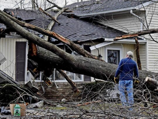 Storm Damage-Southwest Ranches FL Tree Trimming and Stump Grinding Services-We Offer Tree Trimming Services, Tree Removal, Tree Pruning, Tree Cutting, Residential and Commercial Tree Trimming Services, Storm Damage, Emergency Tree Removal, Land Clearing, Tree Companies, Tree Care Service, Stump Grinding, and we're the Best Tree Trimming Company Near You Guaranteed!